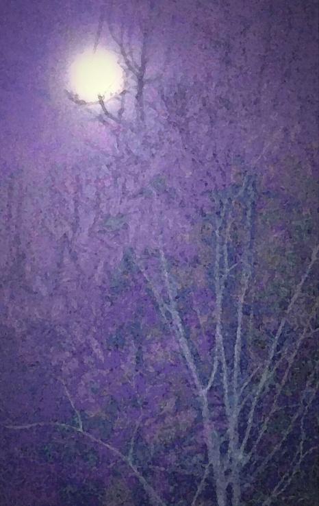amethyst moon2