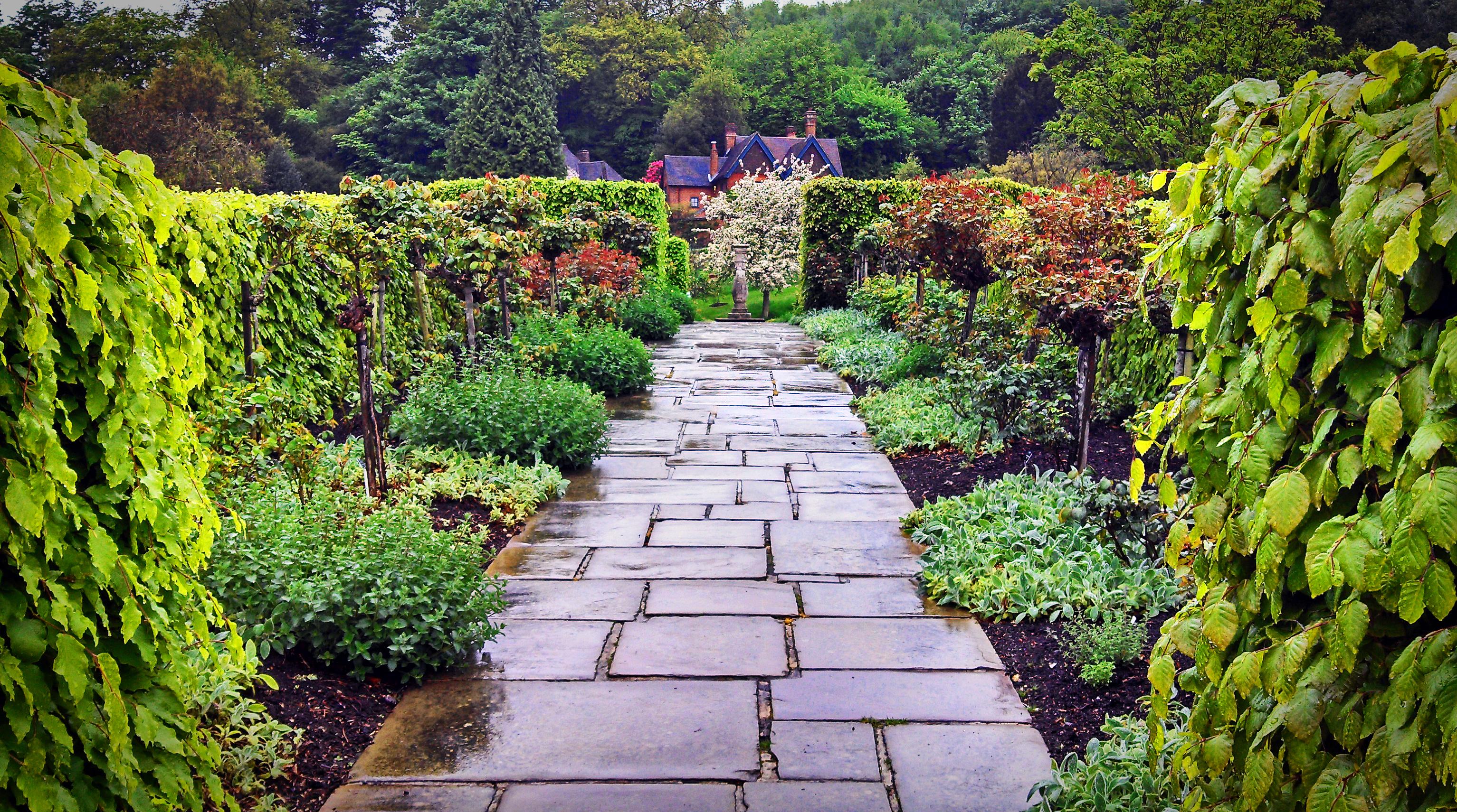 charter house rose herb garden
