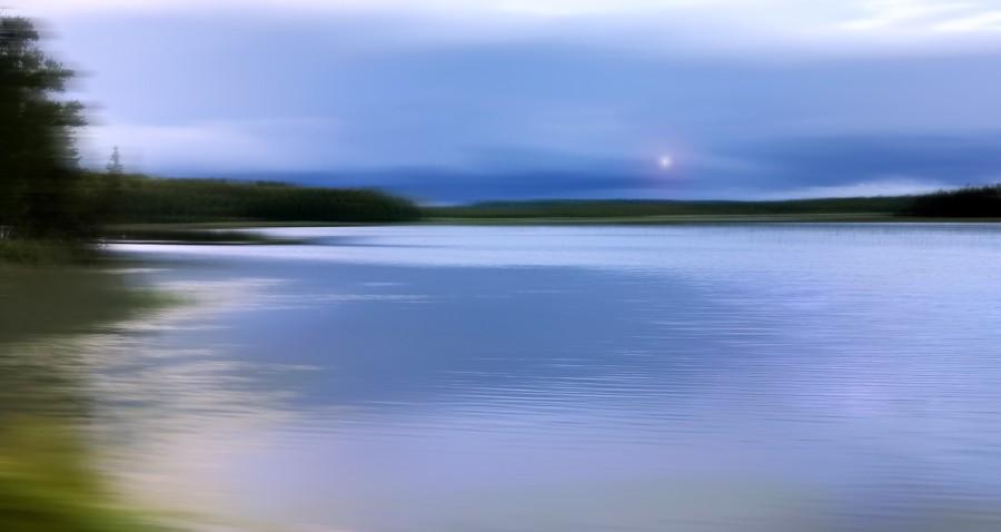 kangaroo lake