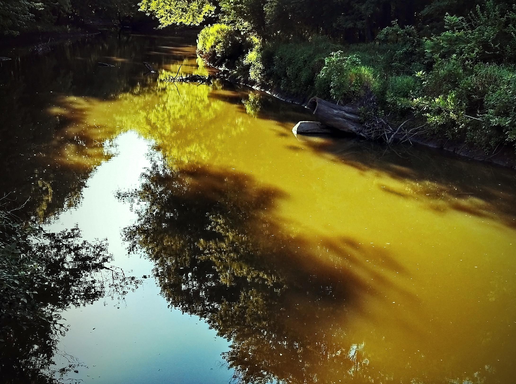 lamoine river