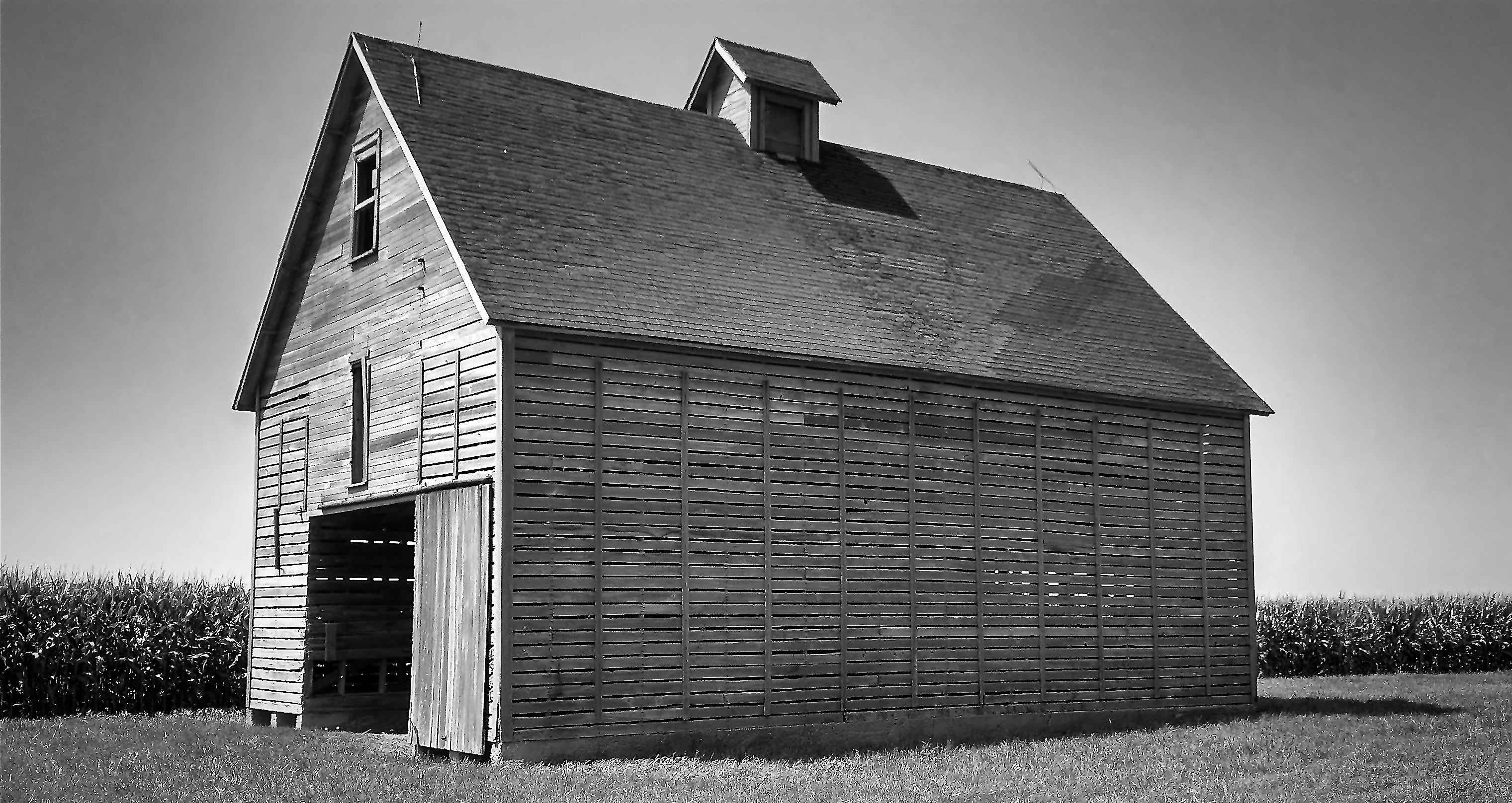 summer corn crib