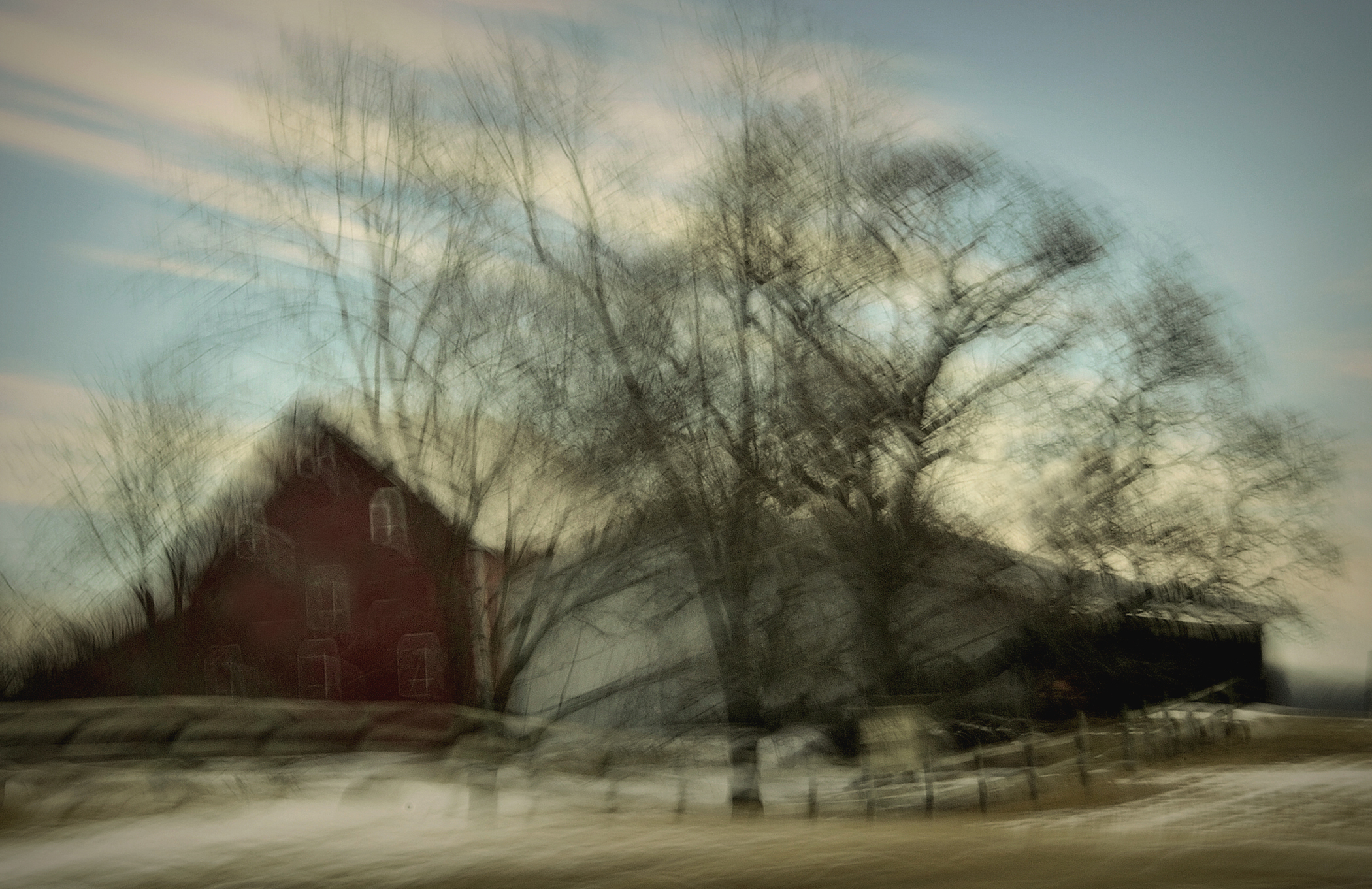 the ghosting of winter trees c2