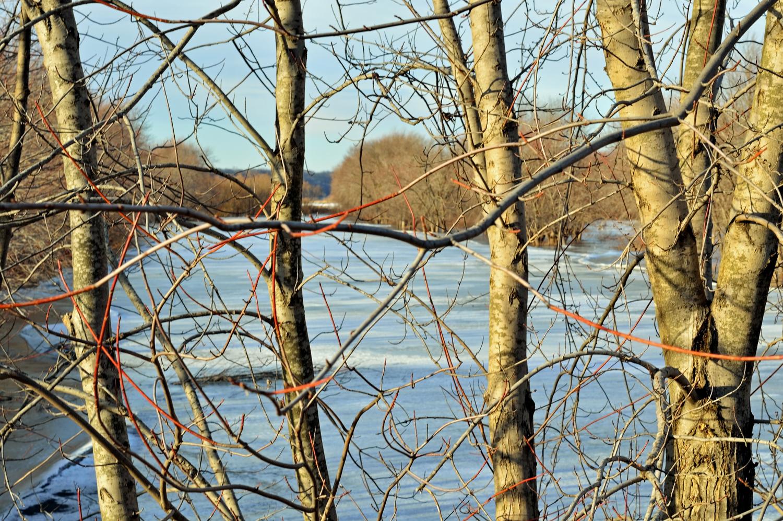 wintercage 2