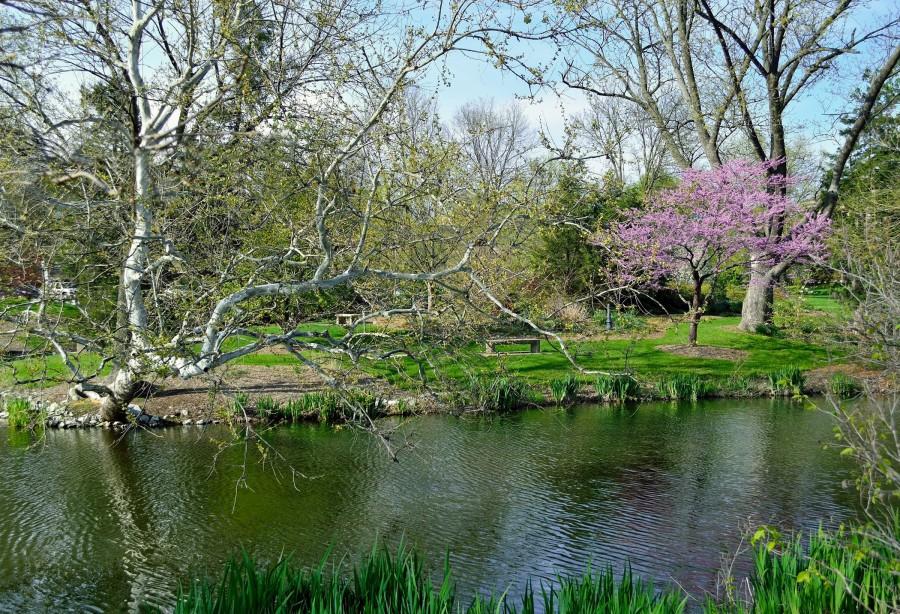 lake ruth in spring 2