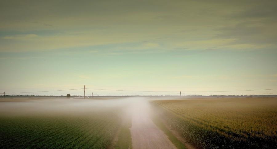 mist p2