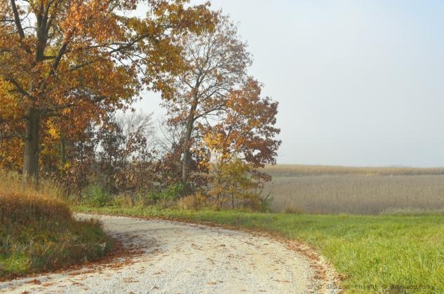 gravel road 2