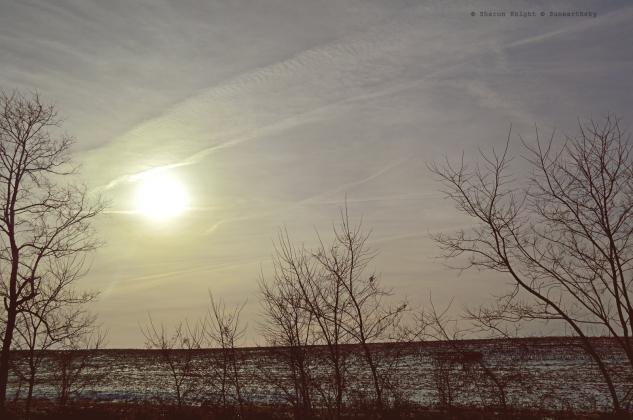 winter sunrise 2