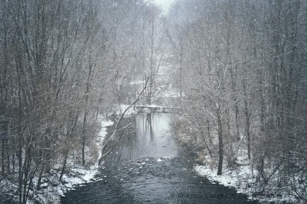 snowcreek 2