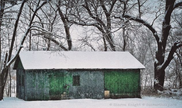 green shed 2
