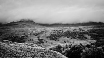 mountain mist 2