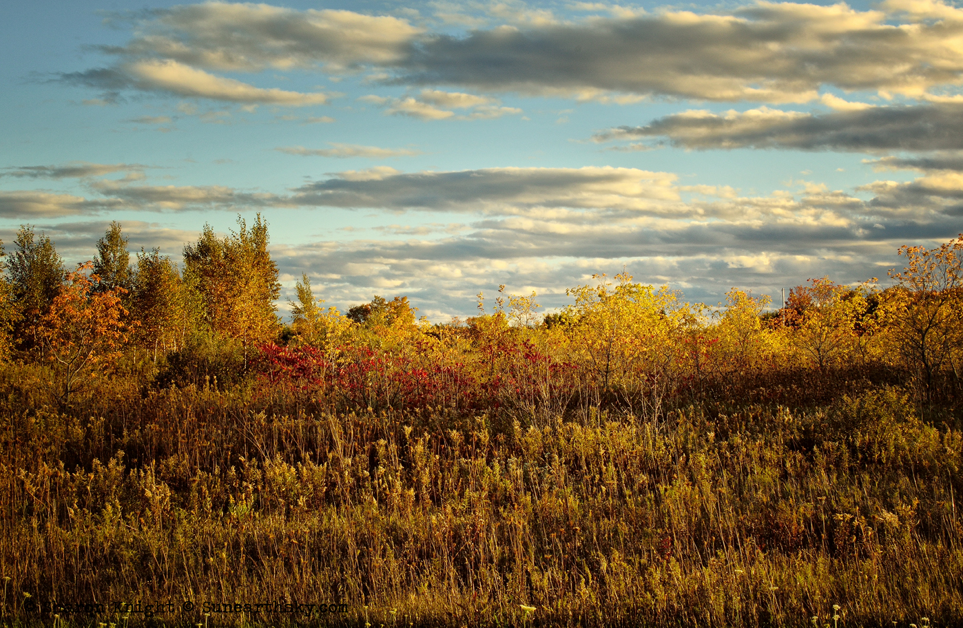 prairie and sky 3