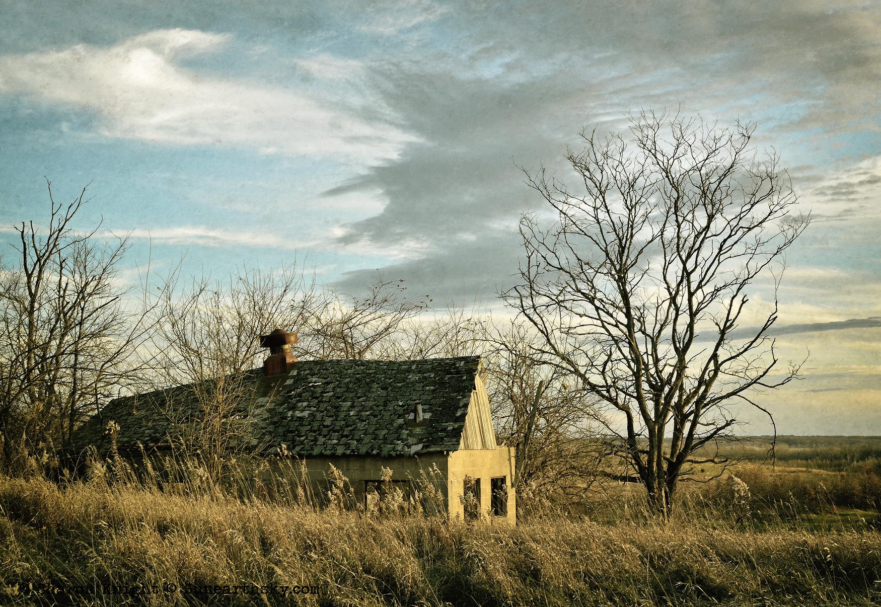 homestead 2