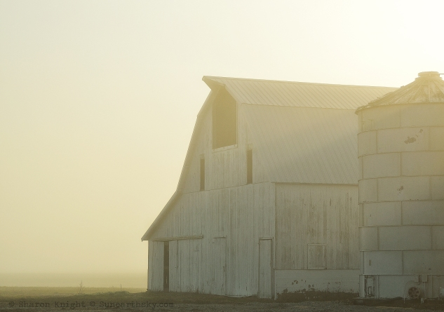 white barn in fog 2