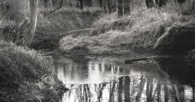 lamoine-river-north-fork-2