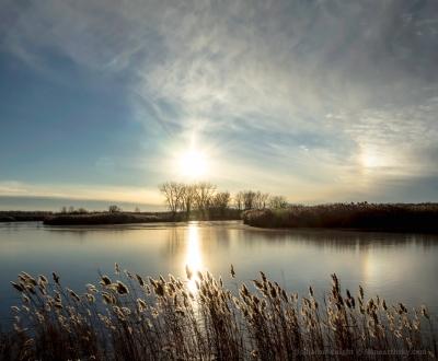 winter-sun-over-banner-marsh-2