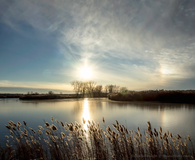 winter-sun-over-banner-marsh-2