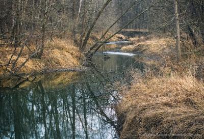 camp-creek-2